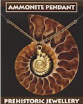 Ammonite Pendant - Gold Plated